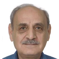 محمد سمير رمان