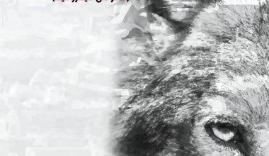 آلام ذئب الجنوب (نصوص ميتاروائية)