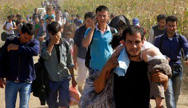 هجرة الشباب السوري دراسة ميدانية في مدينة دمشق
